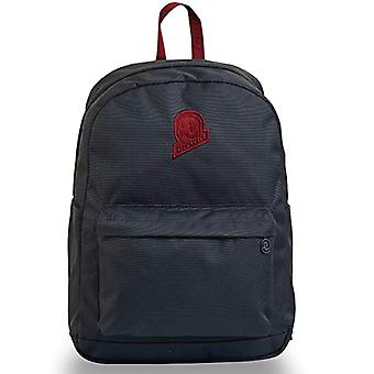 Invicta Carlson Solid Backpack, Grey, 27 lt, School and Leisure