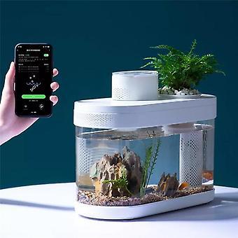 Geometry Fish Tank, Intelligent Control, Automatically Feed The Fish Regularly,