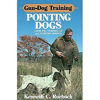 Jakthund utbildning pekar hundar