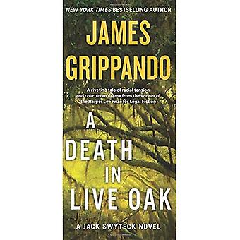 Ein Todesfall in Eichen: Jack Swyteck Roman (Jack Swyteck Roman)