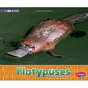 Platypuses: A 4D Book (Australian Animals)