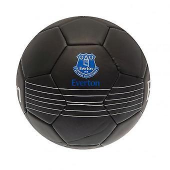 Everton FC Skill Ball