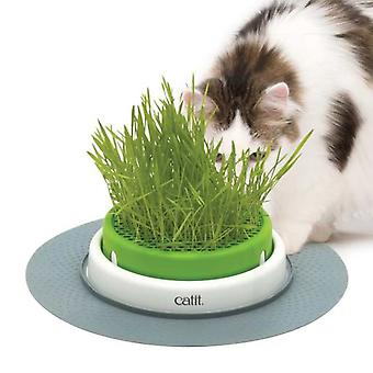 Catit Senses 2.0 Grass Planter Germinator (Katzen , Malz und Kräuter)