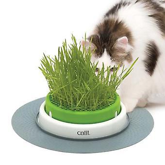 Catit Senses 2.0 Grass Planter Germinador (Cats , Cat Nip, Malt & More)