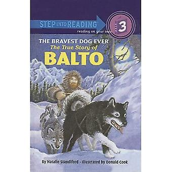 The Bravest Dog Ever: The True Story of Balto (Step Into Reading: A Step 3 Book