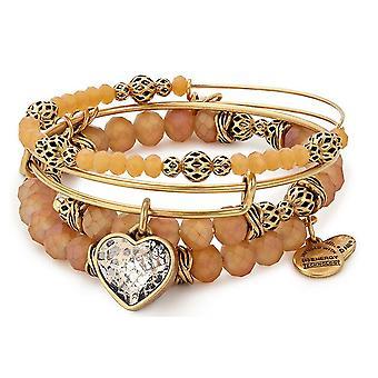 Alex And Ani Crystal Patina Heart Bracelet Charm Set of 3 - A17SETH03RG
