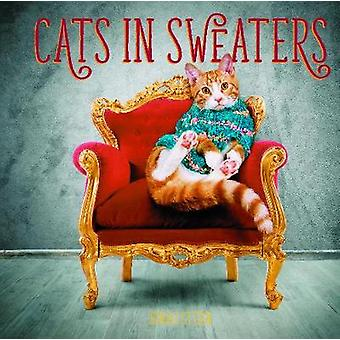 Cats in Sweaters by Jonah Stern - 9780785837732 Book