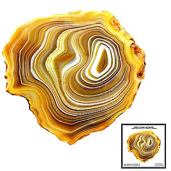 Children's Puzzles Animal Shapes Wood 3d Jigsaw Puzzle Yellow Agate-shaped Children Puzzles Gifts