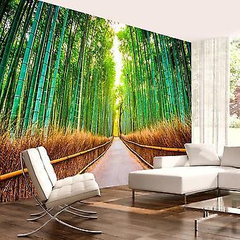 Papier peint - Bamboo Forest