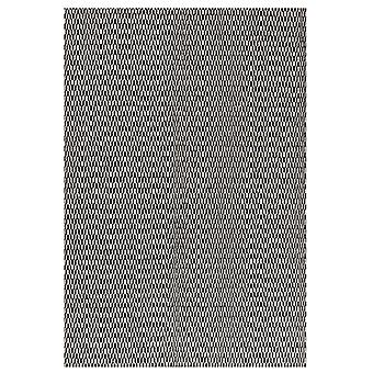 Rugs -Linie Charles - Black / White
