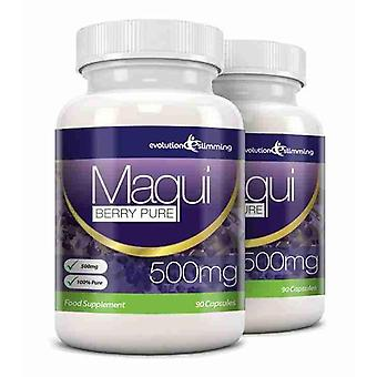 Maqui Berry Antioxidant Supplement 500mg Capsules - 120 Capsules - Antioxidant - Evolution Slimming