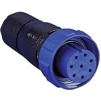 Bulgin PX0410/10S/6065 400 série Buccaneer conector Nominal corrente (detalhes): 1 A