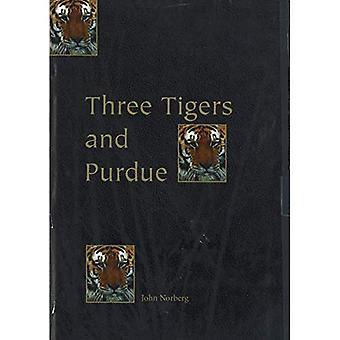 Three Tigers and Purdue: Stories of Korea, Hong Kong, Taiwan, and an American University