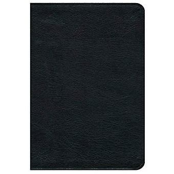 Premium Bible-NRSV