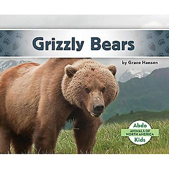 Grizzly Bears (Animals of North America)