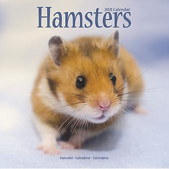Hamsters 2021 Wall Calendar by Created by Avonside Publishing Ltd
