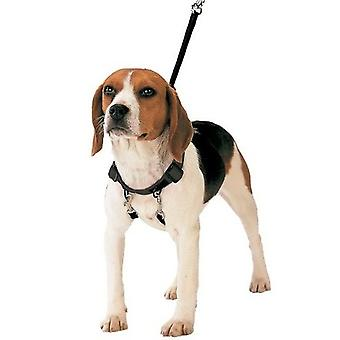 Gloria Anti-Pull Shot Corrector Dog Harness