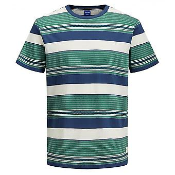 Jack & Jones Joules Vizig Multi Coloured Stripe Tee (spar)