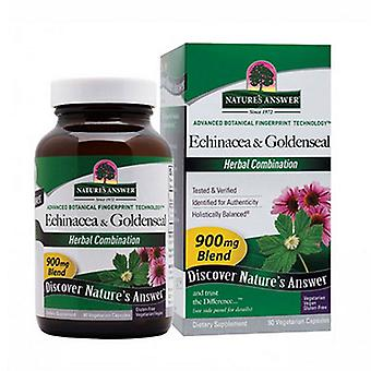Nature's Antwort Echinacea-Goldenseal, 90 Vcaps