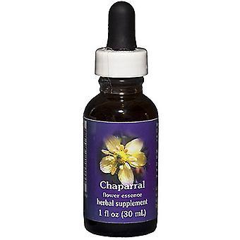 Flower Essence Services Chaparral Dropper, 1 oz
