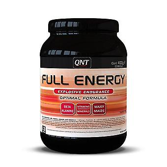 QNT Full-Energy explosieve Endurance & amp; Recovery workout Powder (Punch)-400g