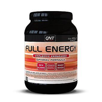QNT teljes energia robbanásveszélyes Endurance & amp; Hasznosítás Workout por (Punch)-400g