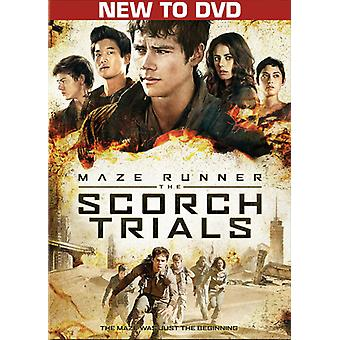 Maze Runner: De Scorch Trials [DVD] USA importeren