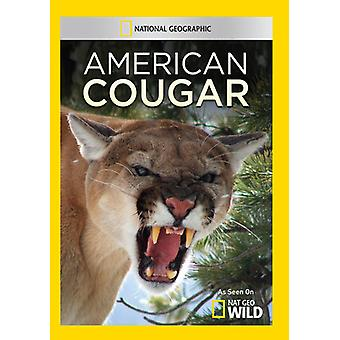 American Cougar [DVD] USA import