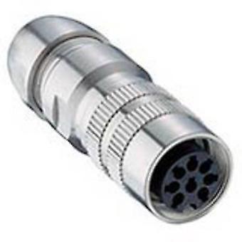 Lumberg 036000 08-1 DIN connecteur prise, droite nombre de broches: 8 Silver 1 PC (s)