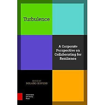 Turbulence: A Corporate Perspective on Collaborating for Resilience