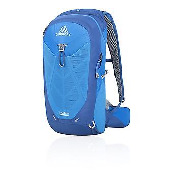 Gregory Miwok 18 Backpack