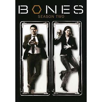 Bones - Bones: Season 2 [DVD] USA import