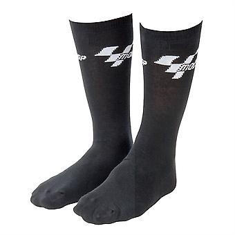 MotoGP Everyday Cotton Socks