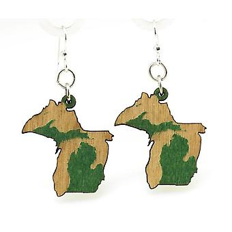 Michigan State Earrings