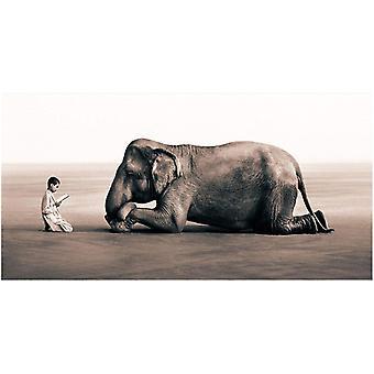 Canvasposter, Bedjande Elefant - 100 x 60 cm