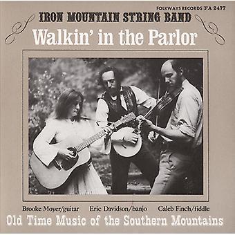 Iron Mountain String Band - Walkin ' i salongen: gammal tid musik av South [CD] USA import