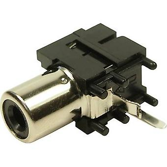 Cliff FC68371 RCA connector Socket, horizontal mount 1 pc(s)