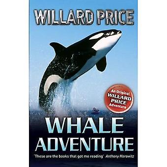 Aventure de la baleine