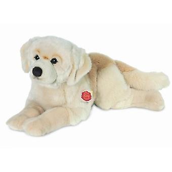 Hermann Teddy abrazar perro Golden Retriever acostado 60 cm