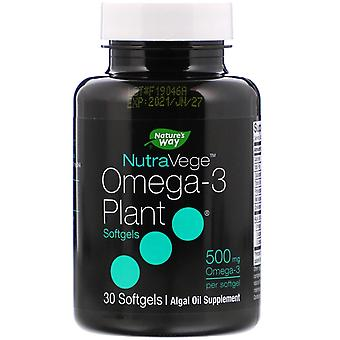 Ascenta, NutraVege, Omega-3 Pflanze, 500 mg, 30 Softgels