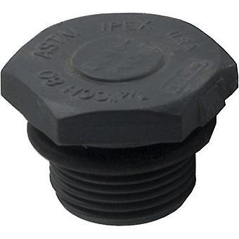 Jacuzzi 31164908R Drain Plug