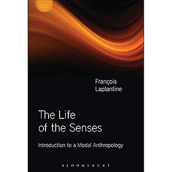 The Life of the Senses (Sensory Studies Series)