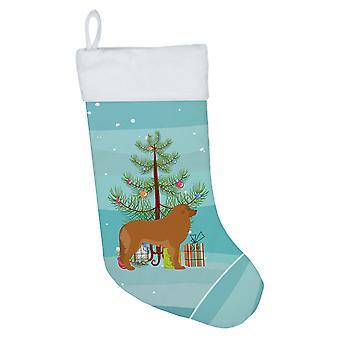 Carolines Treasures BB2976CS Leonberger hyvää joulua puu joulu sukat