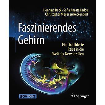 Faszinierendes Gehirn  Eine Bebilderte Reise in Die Welt Der Nervenzellen by Henning Beck & Sofia Anastasiadou & Christopher Meyer Zu Reckendorf