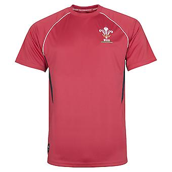 Wales WRU Rugby Mens Panel Poly T-Shirt