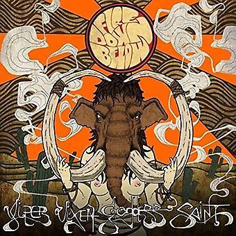 Fire Down Below - Viper Vixen Goddess Saint [CD] USA import