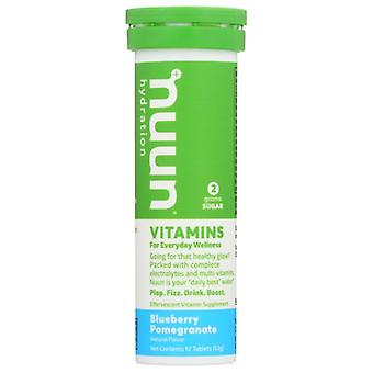 Nuun Vitamin Blubry Pmgrnt, Case of 8 X 12 TB