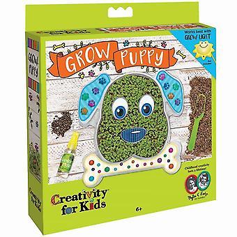Creativity for Kids se développer votre propre Kit chiot