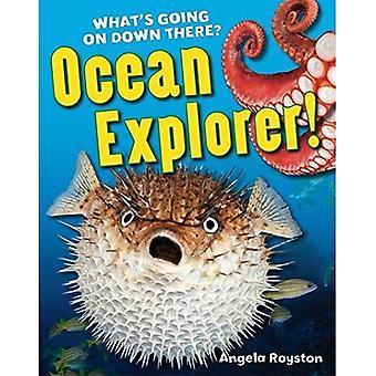 Ocean Explorer!. Angela Royston