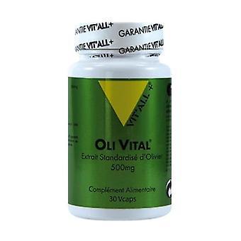 Oli Vital 500mg Standardoitu oliiviuute 30 kasvikapselia